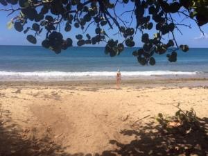 green beach 1