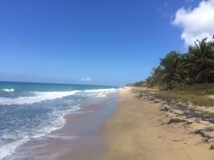 green beach 6