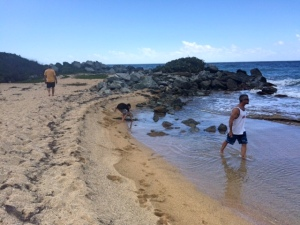 Playa Grande4