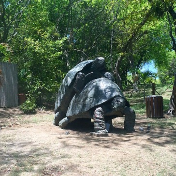 A funny tortoise statue